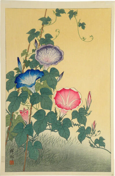 Ohara Koson, 'Morning Glory in Full Bloom', ca. 1925