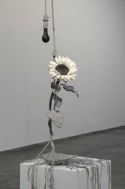 Jeanne Silverthorne, 'Suicidal Sunflower', 2014