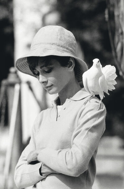 Terry O'Neill, 'Audrey Hepburn with Dove', 1966