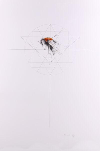 Jessica Albarn, 'Tree Bumble Bee', 2016