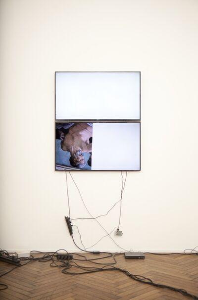 Emmanuel Van der Auwera, 'Video Sculpture V (Vatican)', 2015