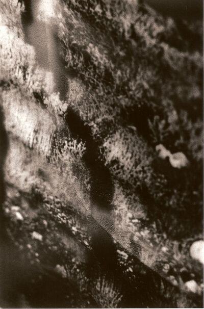 MARIKO SHINDO, '1388', 2006