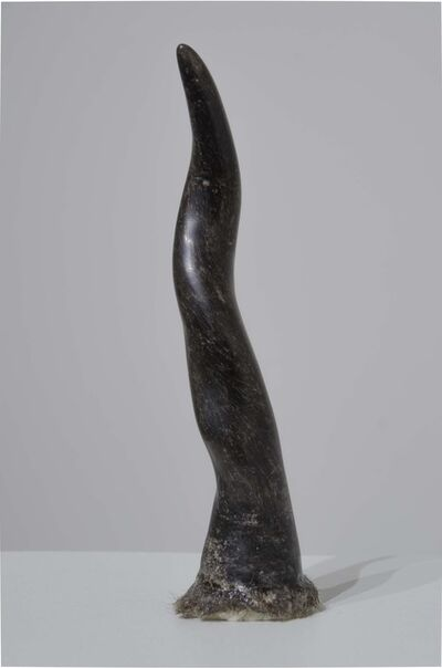 Tim Hawkinson, 'Horn', 2015