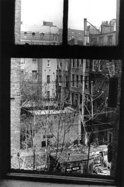 Allen Ginsberg, 'Untitled (Looking Out Kitchen Window)'