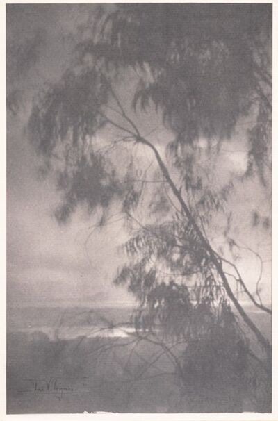 Anne Brigman, 'Threnody', 1911
