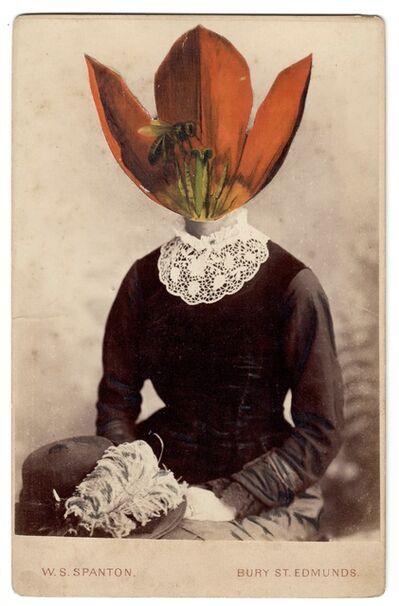 Alida Rodrigues, 'Tulip Schrenkii VI', 2020