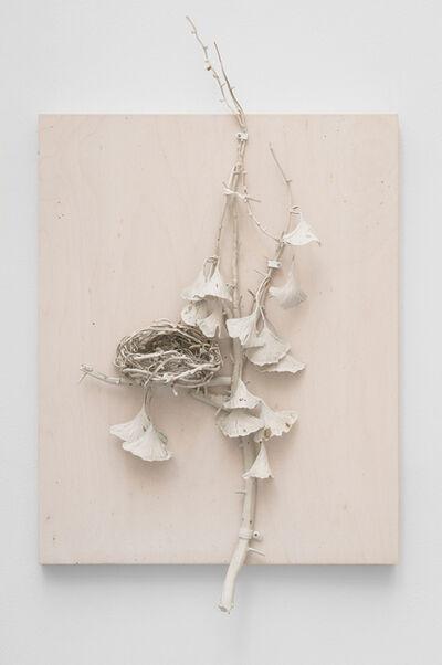 Michael Assiff, 'Ginko, Nest', 2017