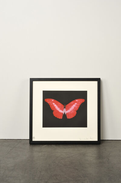 Damien Hirst, 'To Lose (Butterfly)', 2008