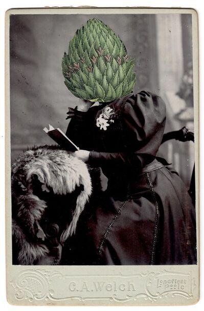 Alida Rodrigues, 'Bromelia ananas L.', 2020