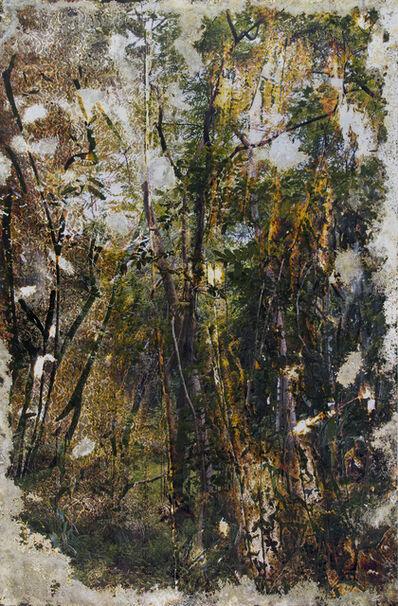 Matthew Brandt, 'Wai'anae 92602', 2015