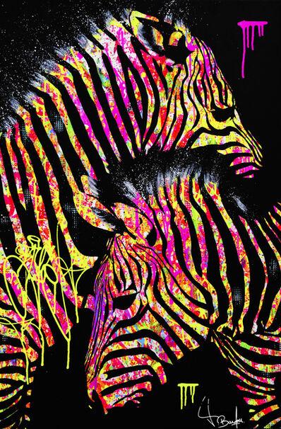 Vincent Bardou, 'Grevy's Zebras', 2018