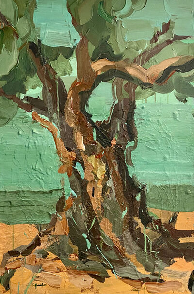 """Tagreed Darghouth, '""""The Tree Within, A Palestinian Olive Tree"""" series', 2020"""