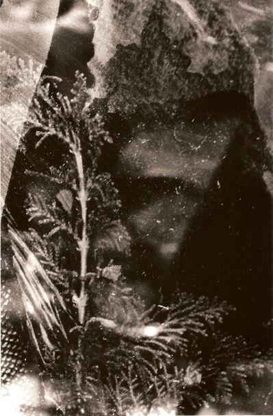 MARIKO SHINDO, '1438', 2006