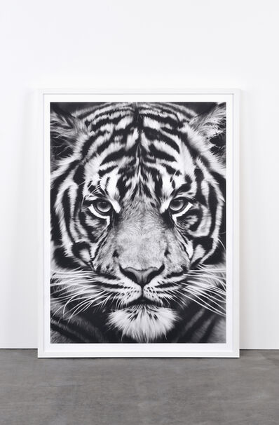 Robert Longo, 'Tiger, 2012', 2012