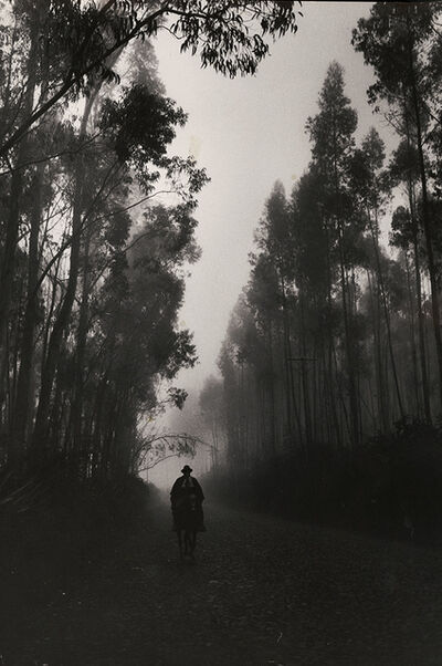 Cornell Capa, 'Forested Road, Equador', 1965/1965