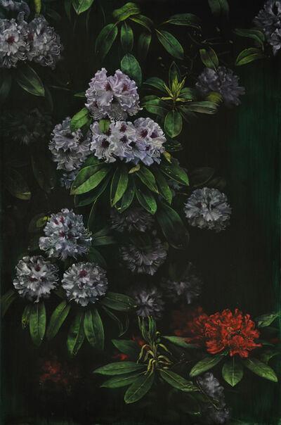 Helena Parada-Kim, 'Rhododrendon', 2019