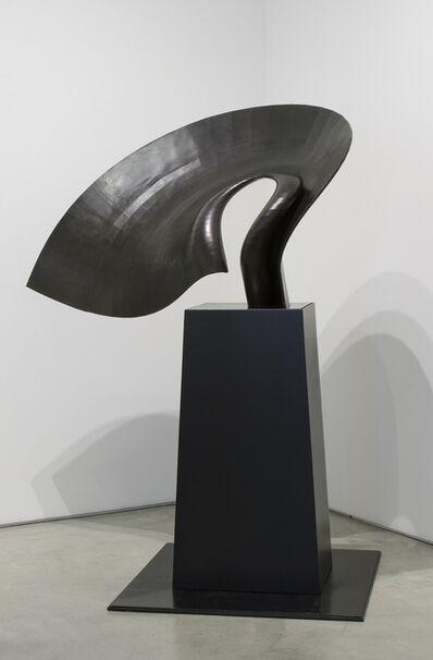 David Curt Morris, 'Matador's Cape', 2009