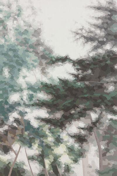 Elaine Coombs, 'Verdant Fog', 2017