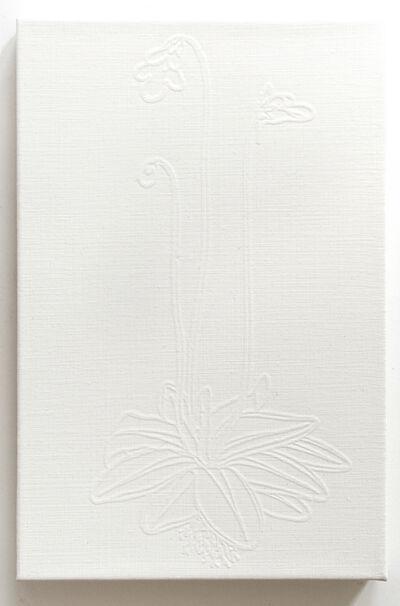 Paul Morrison, 'Butterwort', 2015