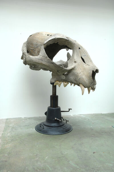 Quentin Garel, 'Felix (Skull of cat)', 2010