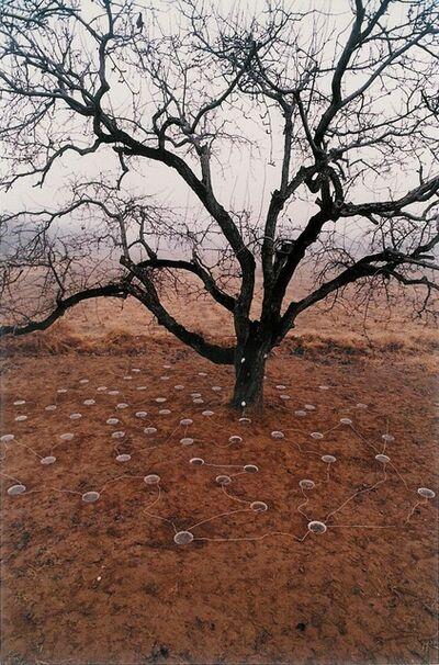 Yin Xiuzhen 尹秀珍, 'Pear Tree', 1994