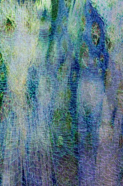 Wayne Hutchins, 'Observation 23', 2015