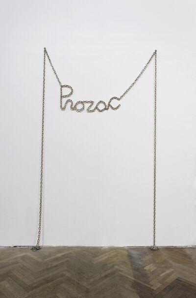 Monica Bonvicini, 'Prozac', 2009