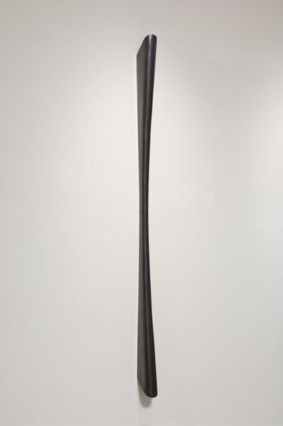 Steve Murphy, 'Where The Branches Meet', 2008