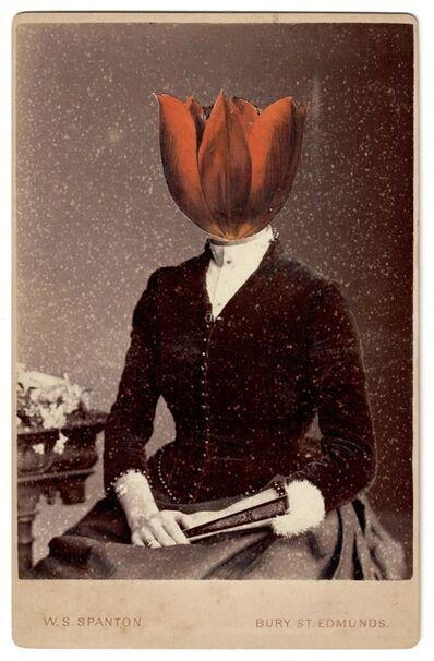 Alida Rodrigues, 'Tulip Schrenkii III', 2020