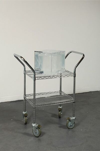 Sean Raspet, 'Arbitrary Embodiment (A02)', 2013