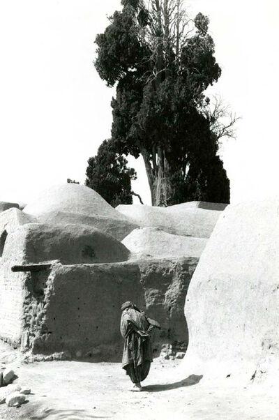 Inge Morath, 'Sacred cypress tree in Chum, Iran,', 1956