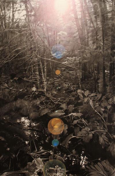 Paul Jacobsen, 'Untitled 3 (Land Porn Series)', 2012
