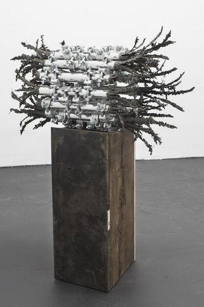 Luciana Lamothe, 'Untitled', 2020