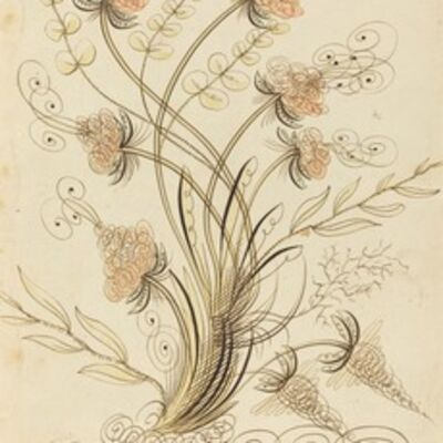 Jean-Joseph Bernard called Bernard de Paris, 'Calligraphic Flowers'