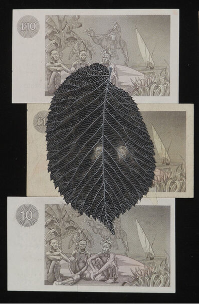 Fiona Hall, 'Ulnus glabra/Scotch elm ', 2002