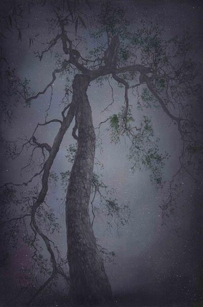 Yansha Zi'an, 'Ancient Tree No. 6', 2014