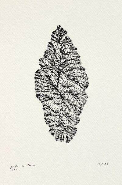 Paula Cortazar, 'Sin título (de la serie Fosas Oceánicas)', 2013