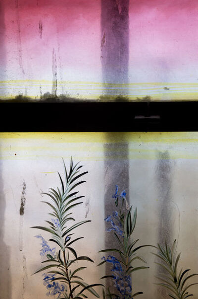 Jessica Backhaus, 'Timeless (from the series Once, Still and Forever)', 2012