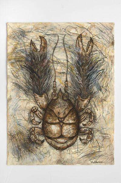 Jeffrey Vallance, 'Yeti Crab (Kiwa hirsuta)', 2016