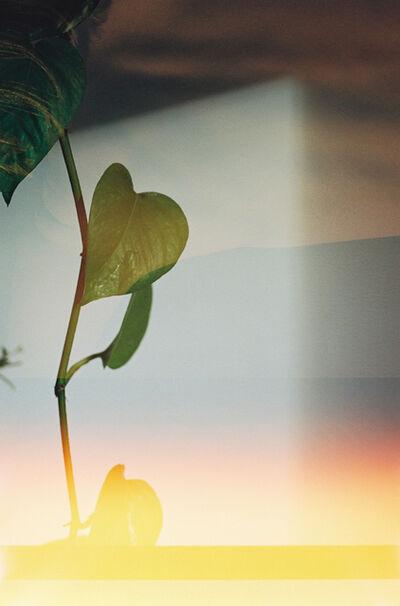 Annelie Bruijn, 'Radiance', 2019