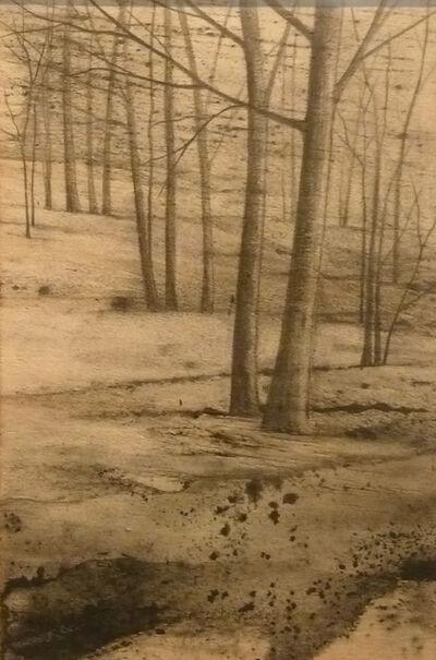 Marika Vicari, 'In quel bosco nero presto fioriranno i bucaneve', 2014