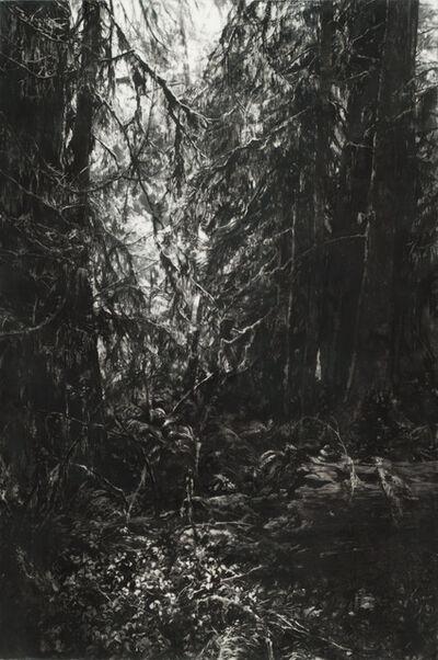 Robin Cole, 'The Passage', 2012