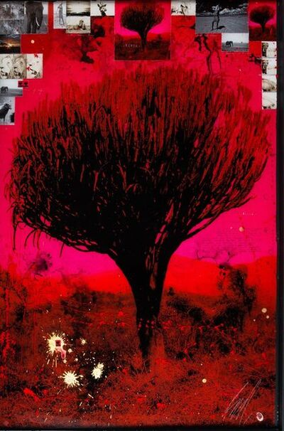 Raphael Mazzucco, 'Red Tree', 2018
