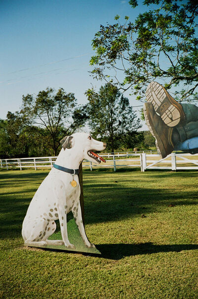 William Greiner, 'Dog Cut Out, Cocodrie, LA', 2005