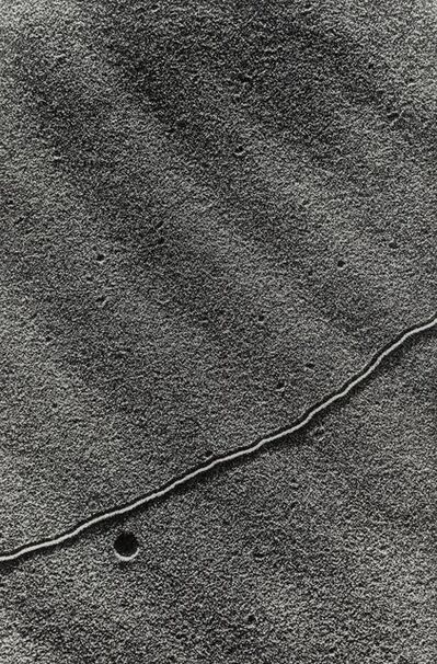 Lucien Clergue, 'Language of the Sand 37', circa 1975
