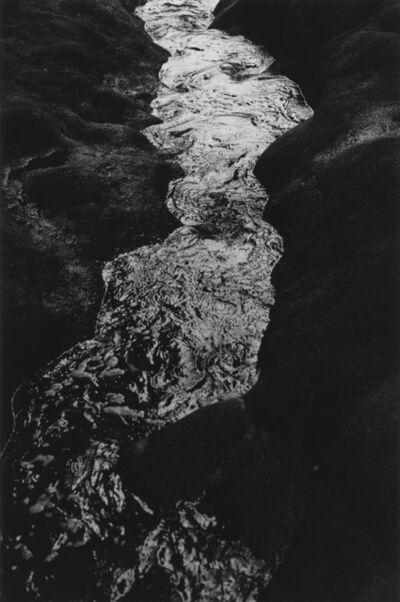 Masahiro Kodaira, 'Untitled / Kouzushima, Tokyo 2015.8.5', 2015