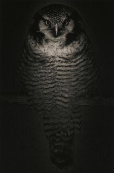 Yamamoto Masao, 'Untitled #1575', 2009