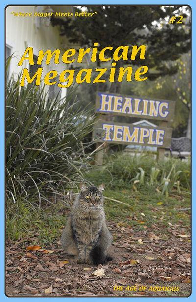 Lisa Anne Auerbach, 'American Megazine #2', 2014