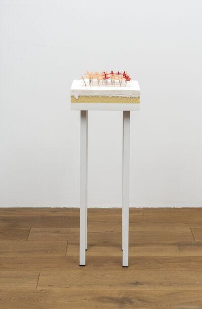 Martin Feldbauer, 'Monte Carlo Studie', 2019