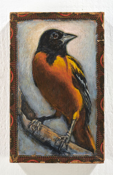 Ed Musante, 'Baltimore Oriole / Lord Beaconsfield', 2019